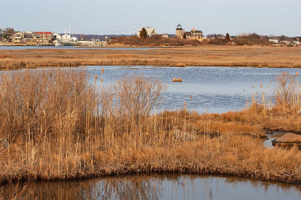 Tidal flat north from Jerusalem and a fake...view from Succotash Rd.. Rhode Island