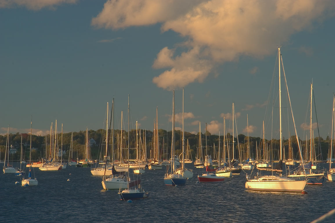 Masts in Newport Harbor, view from Long Wharf at morning. Newport, Rhode Island