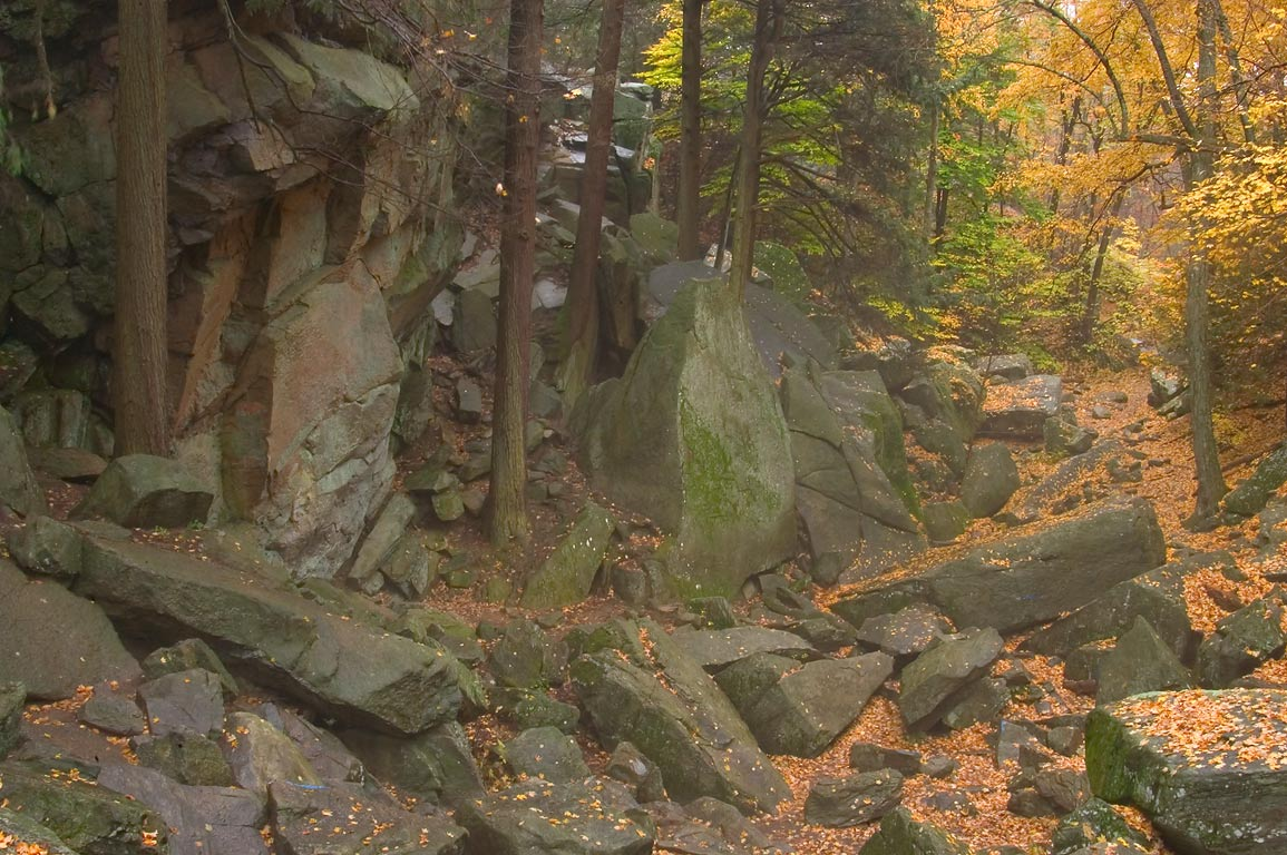 Purgatory Chasm State Reservation, slopes of the chasm. Sutton, Massachusetts