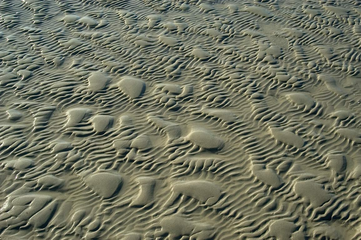 Beach sand ripples at low tide in Demarest-Lloyd State Park. Dartmouth, Massachusetts