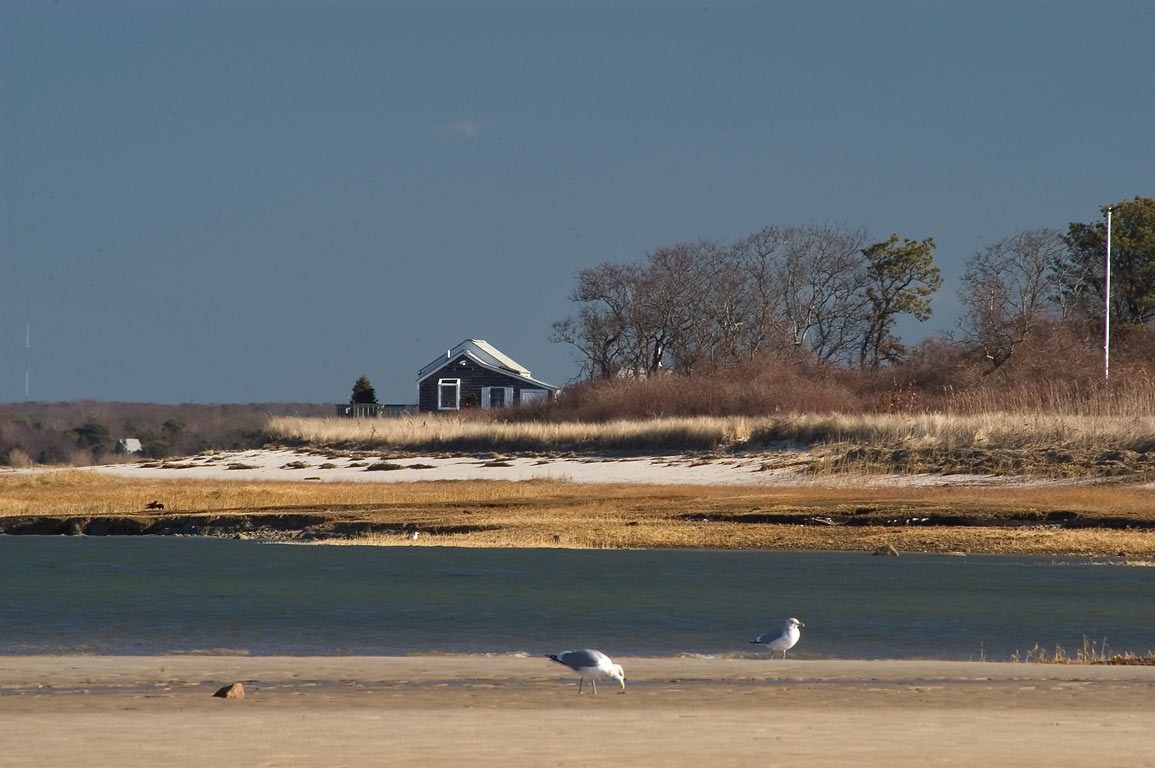 Salt Marsh east from north end of Bone Hill Rd. in Cape Cod. Barnstable, Massachusetts