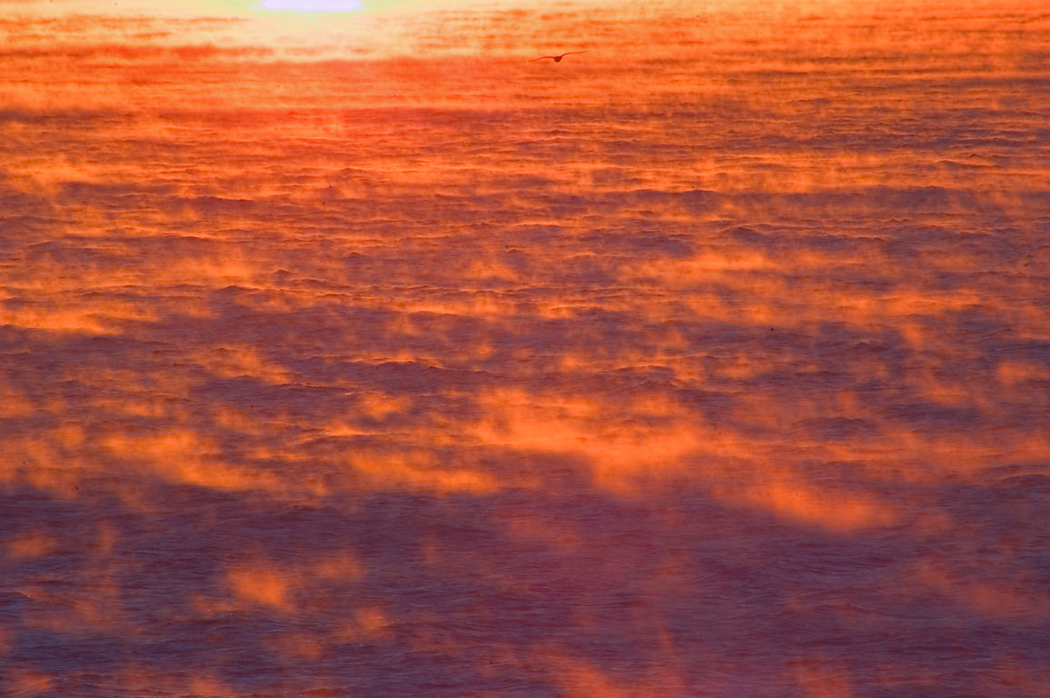 Vapor rising from Atlantic Ocean at sunrise, view...Point. Jamestown, Rhode Island