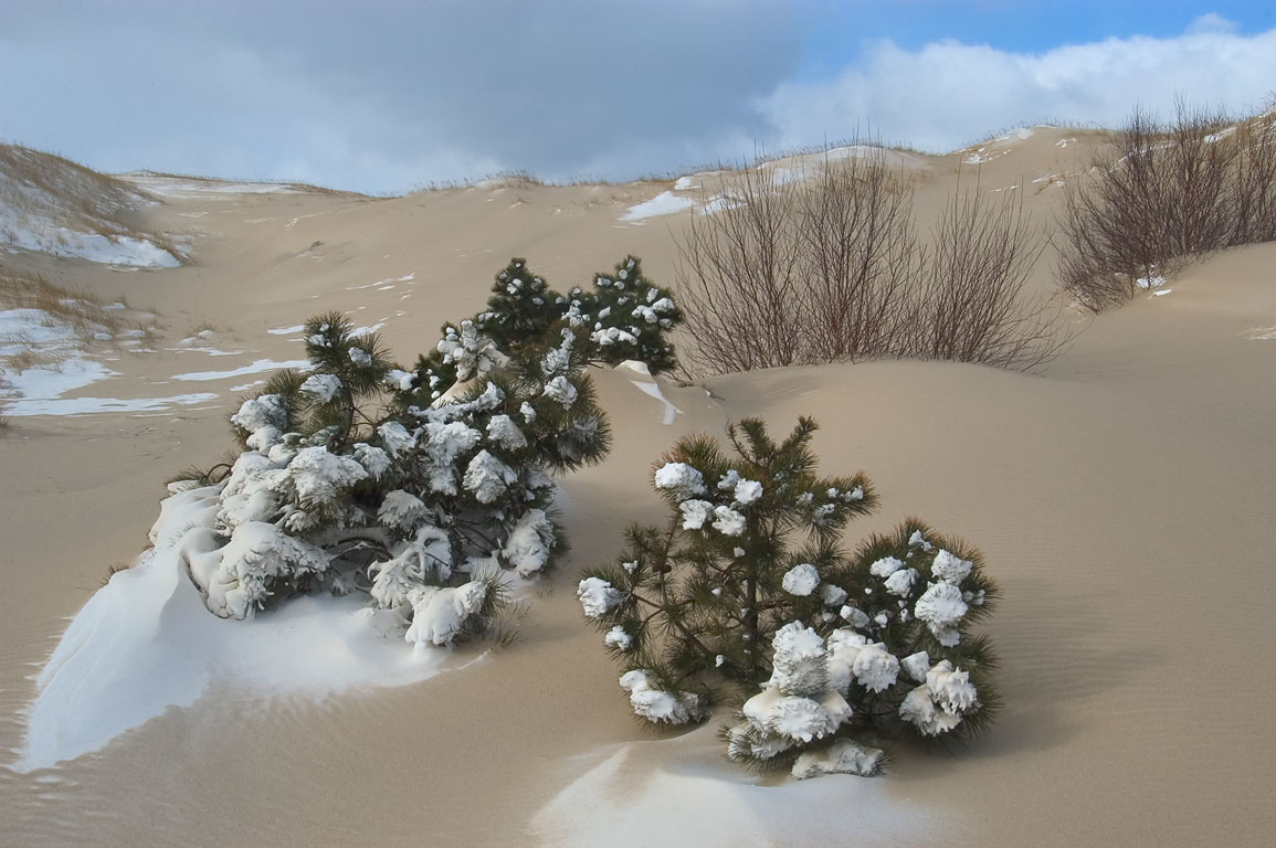 Mixture of drifting snow and sand between dunes...Cape Cod. Provincetown, Massachusetts