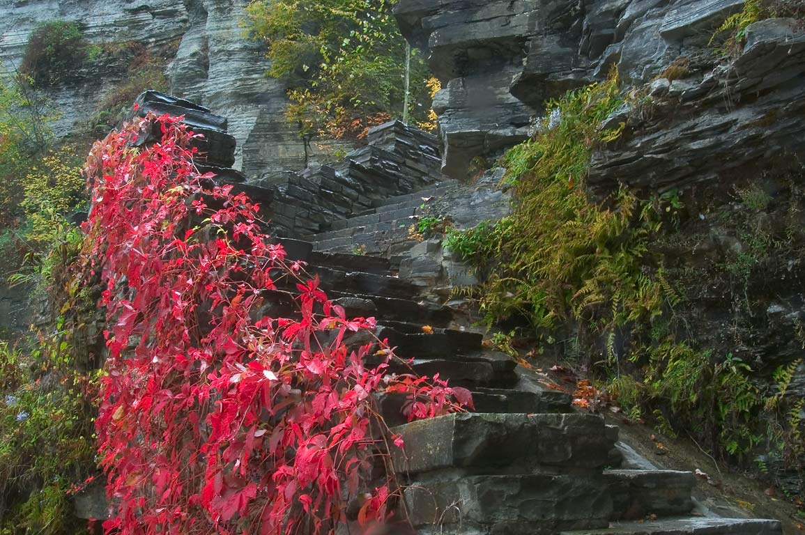 Stone stairs in Robert H. Treman State Park near Ithaca. New York