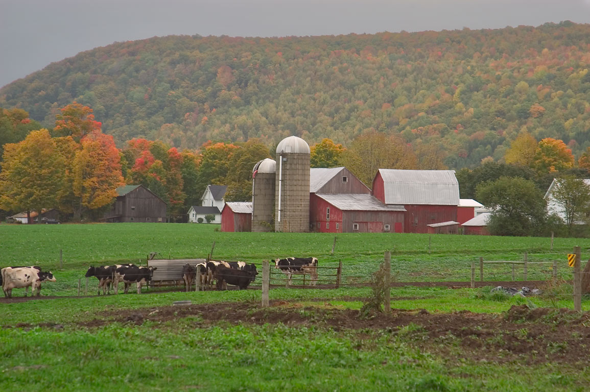 A farm near Flat Iron Rd.. Dryden, New York