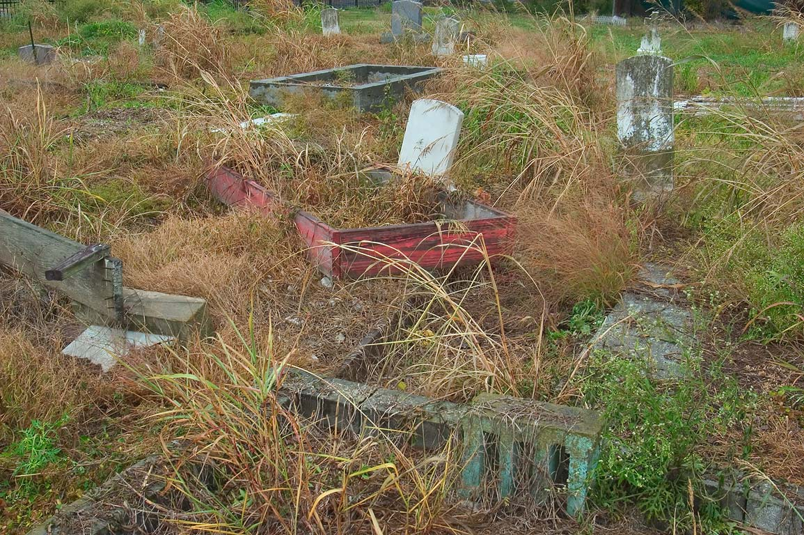 Tombs and weeds in Holt Cemetery. New Orleans, Louisiana