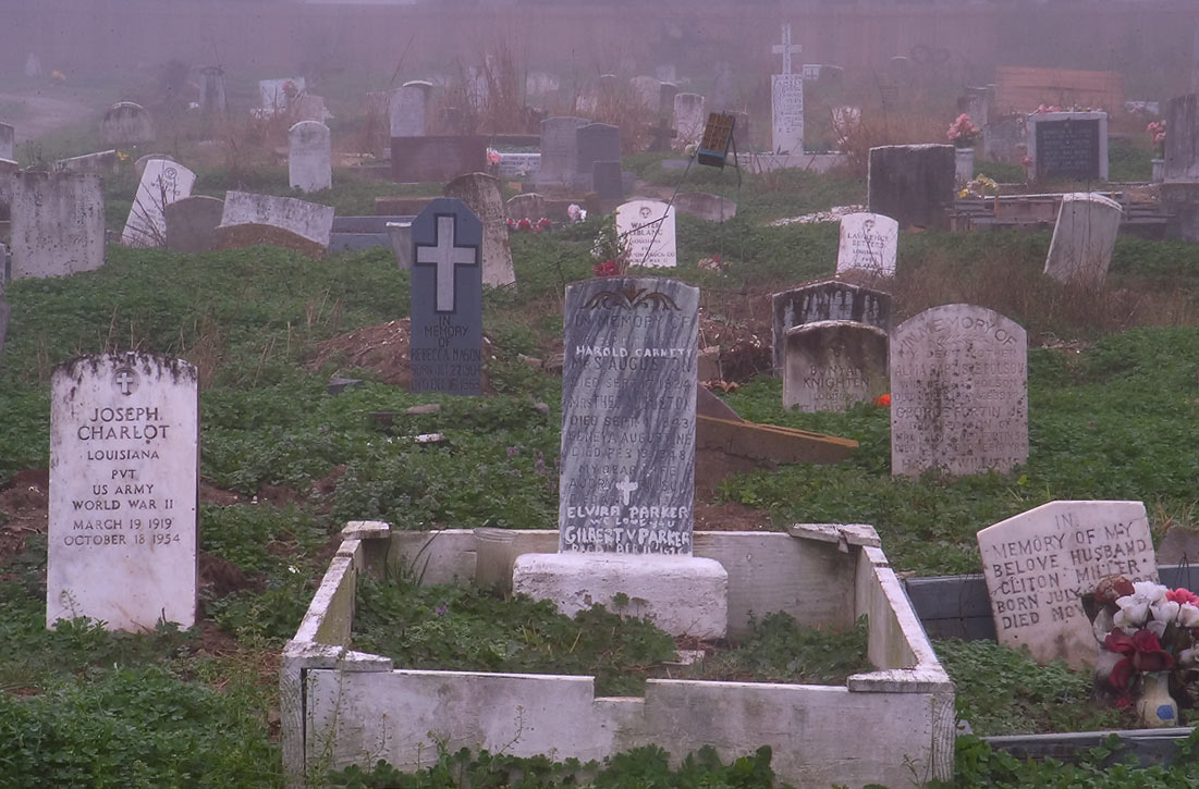 Headstones in Holt Cemetery in fog. New Orleans, Louisiana