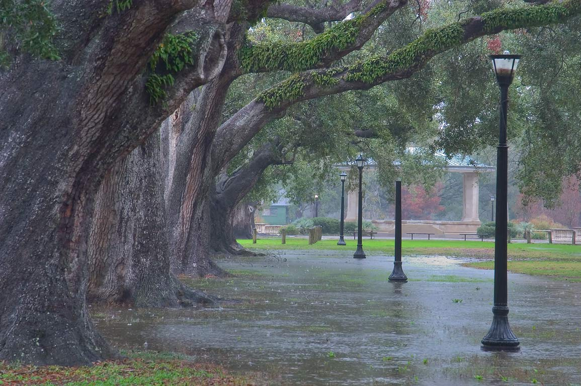 Entrance of Audubon Park at rain. New Orleans, Louisiana