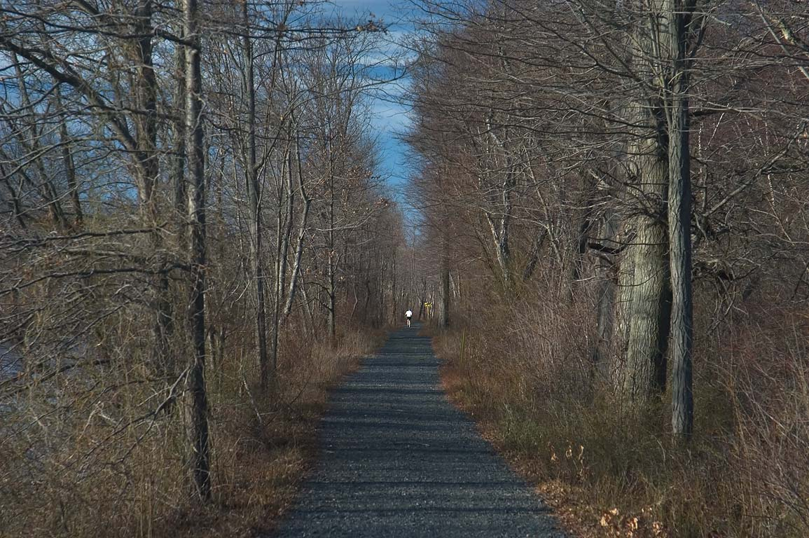 A trail in Delaware and Raritan Canal State Park. Kingston, New Jersey