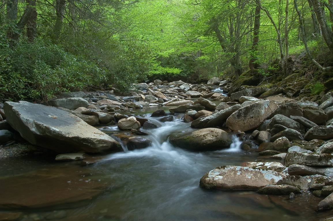Oconaluftee River near Newfound Gap Rd.. Smoky Mountains National Park, Tennessee
