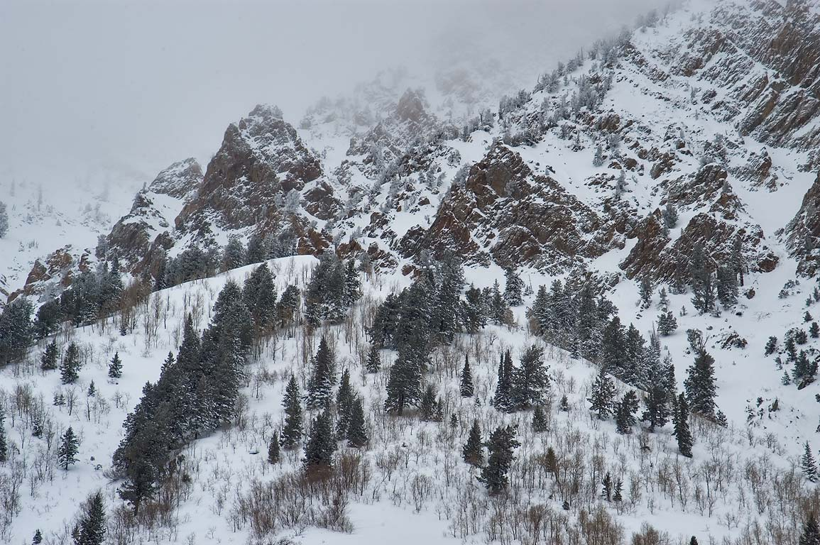 Snowy slope of Superior Peak in Snowbird Ski Area. Utah