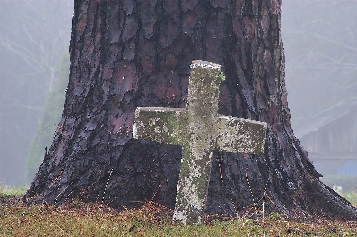 Cross under a pine in TDCJ Captain Joe Byrd (Peckerwood Hill) Cemetery. Huntsville, Texas