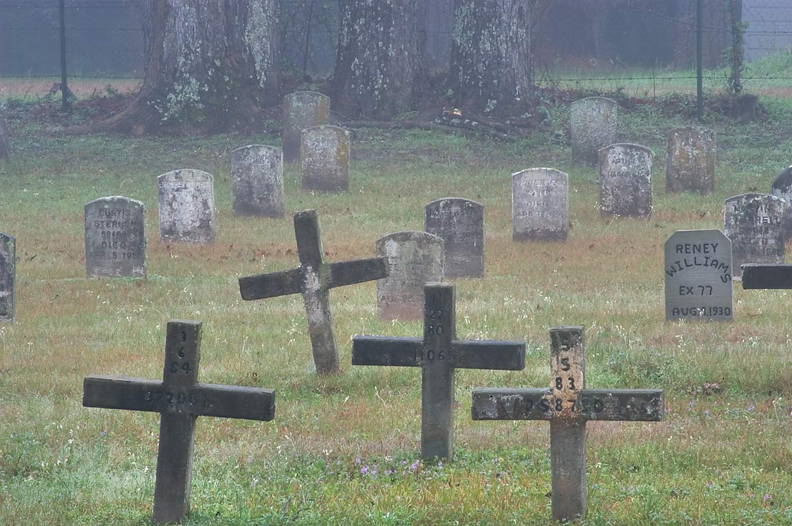 Crosses in TDCJ Captain Joe Byrd (Peckerwood Hill) Cemetery in fog. Huntsville, Texas