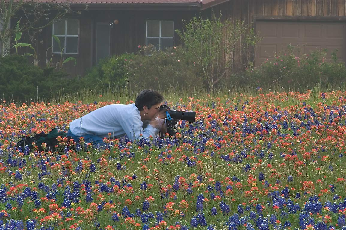 Nature photographer Therese Tusa taking macro...Park at morning. Independence, Texas