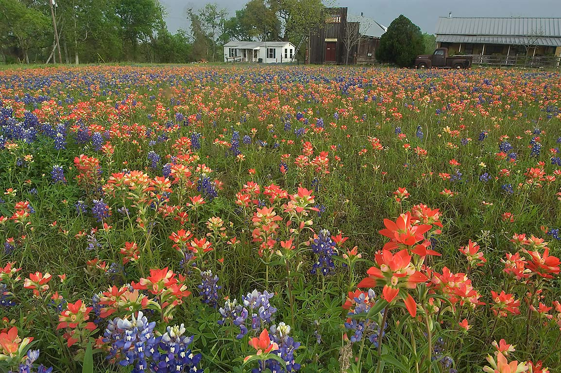Independence-College Station, Texas  - Old Baylor Park. Independence, Texas