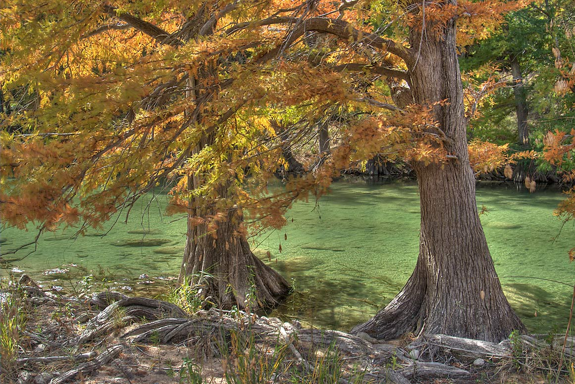 Shores of Pedernales River below bluffs in...Falls State Park. Johnson City, Texas