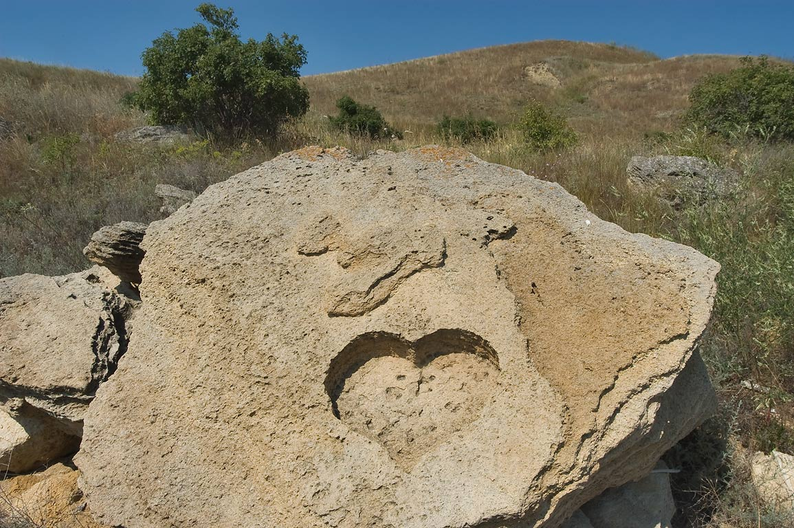 Heart shape impressed on limestone on shores of Kuyalnik Liman. Odessa, Ukraine