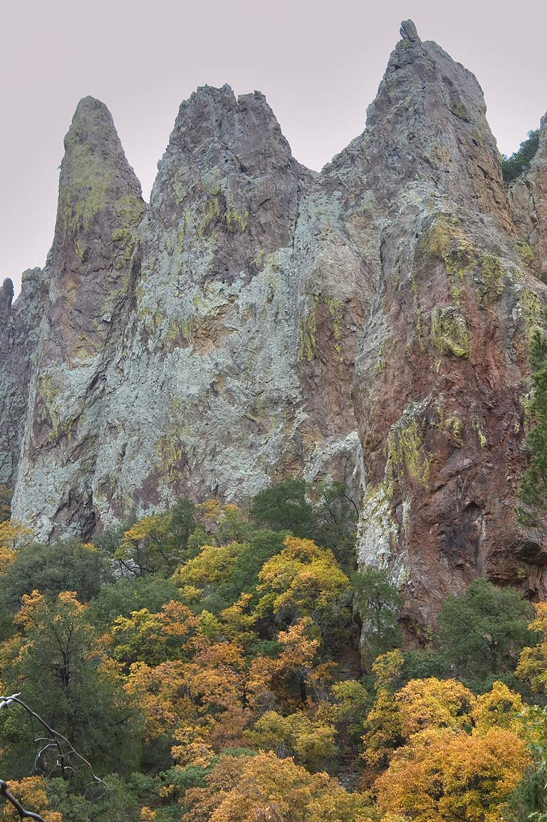 Fall colors of Chisos Mountains from Pinnacles Trail. Big Bend National Park