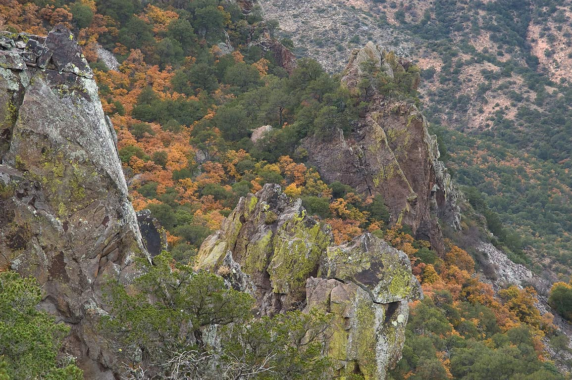 Slopes of Chisos Mountains from Pinnacles Trail. Big Bend National Park