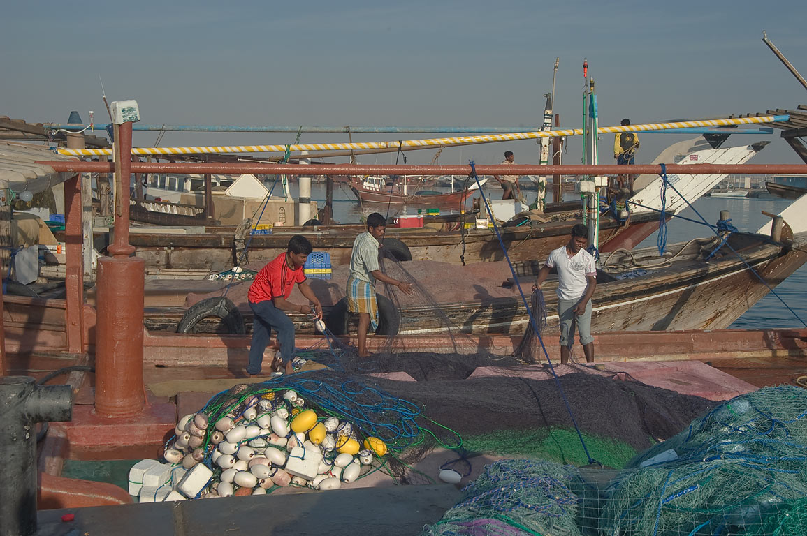 Fishermen working with nets on dhow fishing boats. Al Khor, Qatar