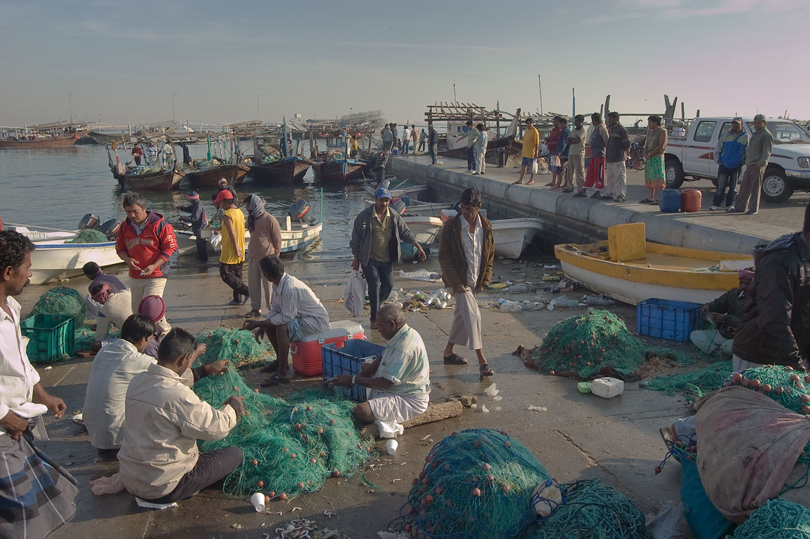 Fishermen working with nets in dhow harbor. Al Khor, Qatar