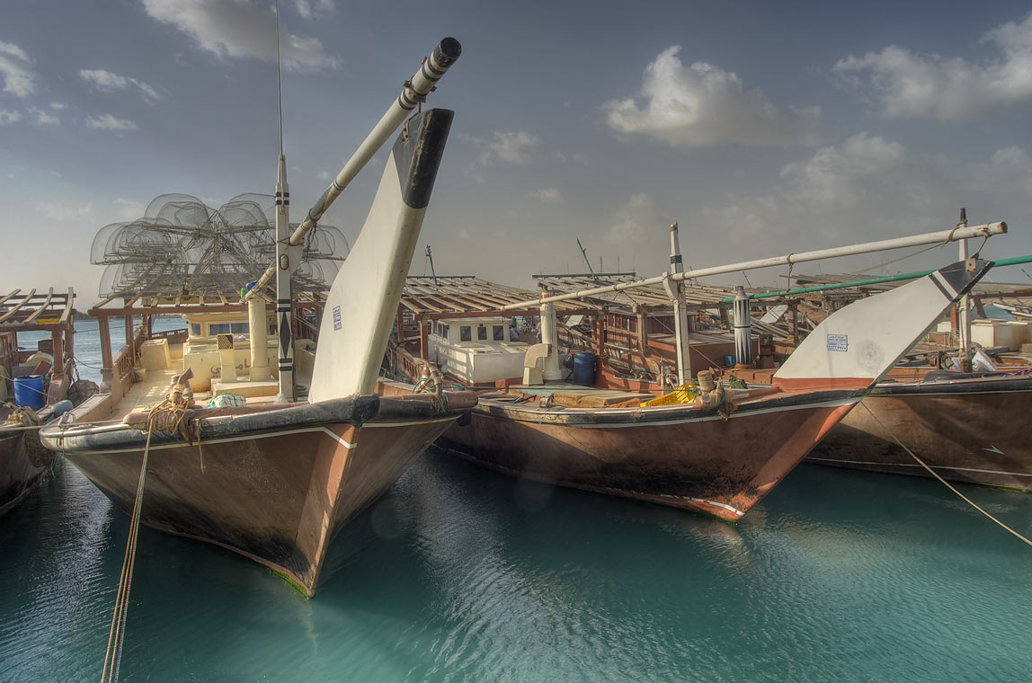 Dhow boats in fishing harbor of Ruwais on north coast. Qatar