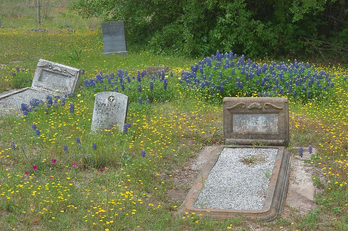 Tombs with wildflowers in a cemetery at Dunnheim Rd. east from Gay Hill. Texas