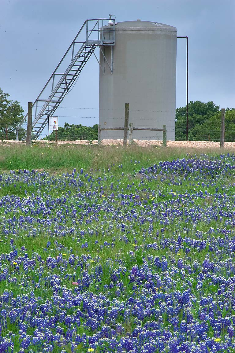 Oil cistern in bluebonnets near Baranowsky Rd. south-west from Brenham. Texas