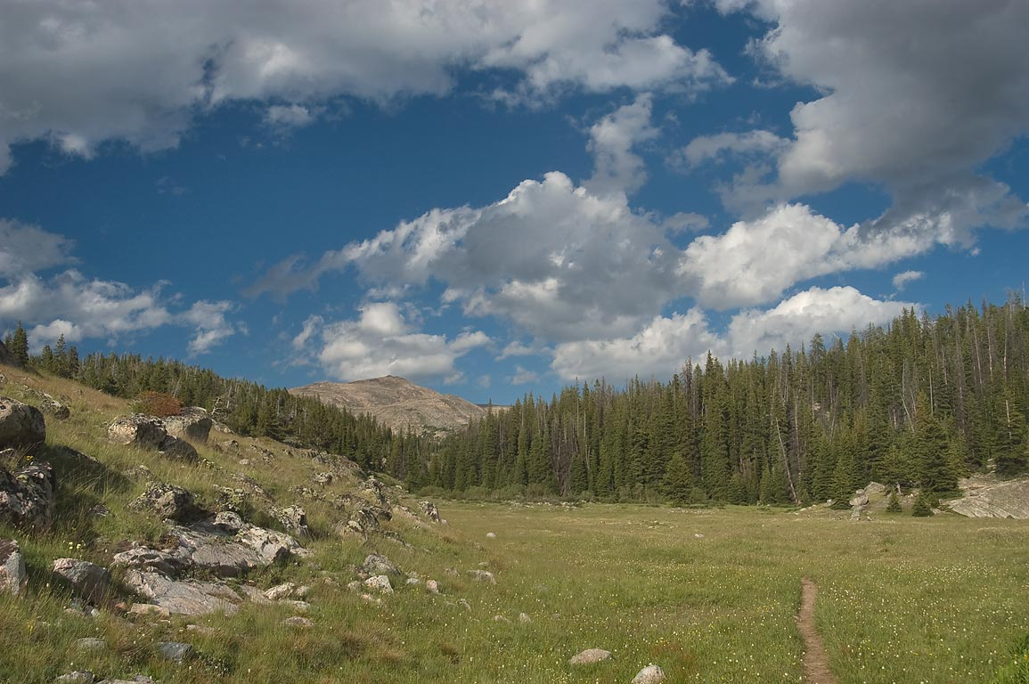 Valley of Teensleep Creek in Cloud Peak Wilderness. Wyoming
