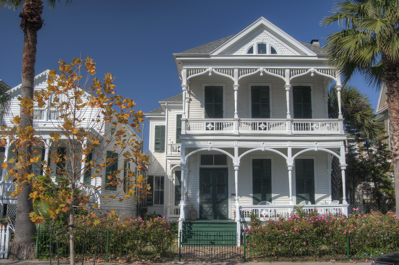Ball Street in East End Historic District. Galveston, Texas