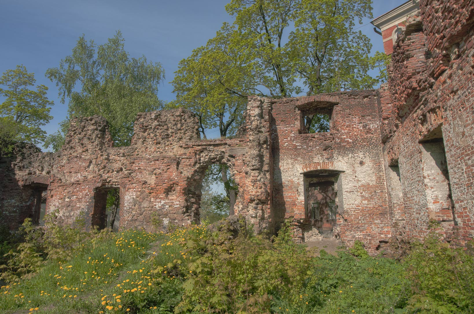 Ruins of Dome Cathedral (old city church). Vyborg, Russia