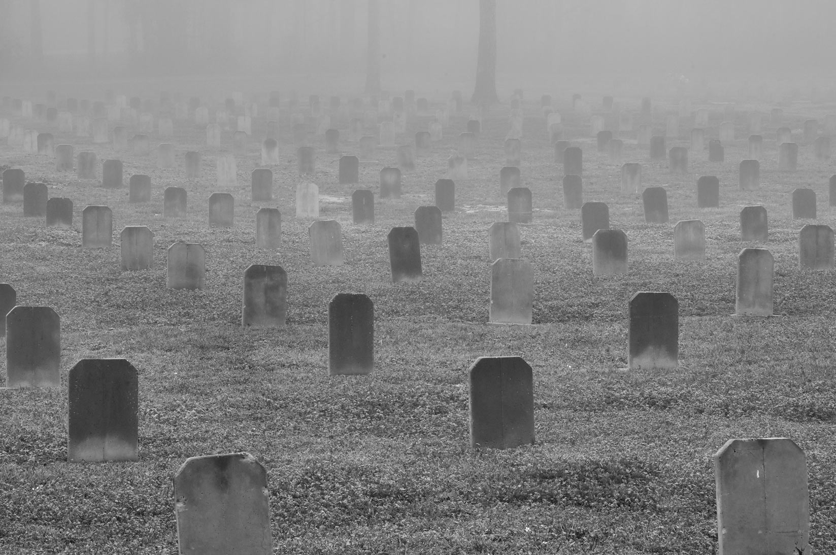 Headstones of TDCJ Captain Joe Byrd (Peckerwood Hill) Cemetery in fog. Huntsville, Texas