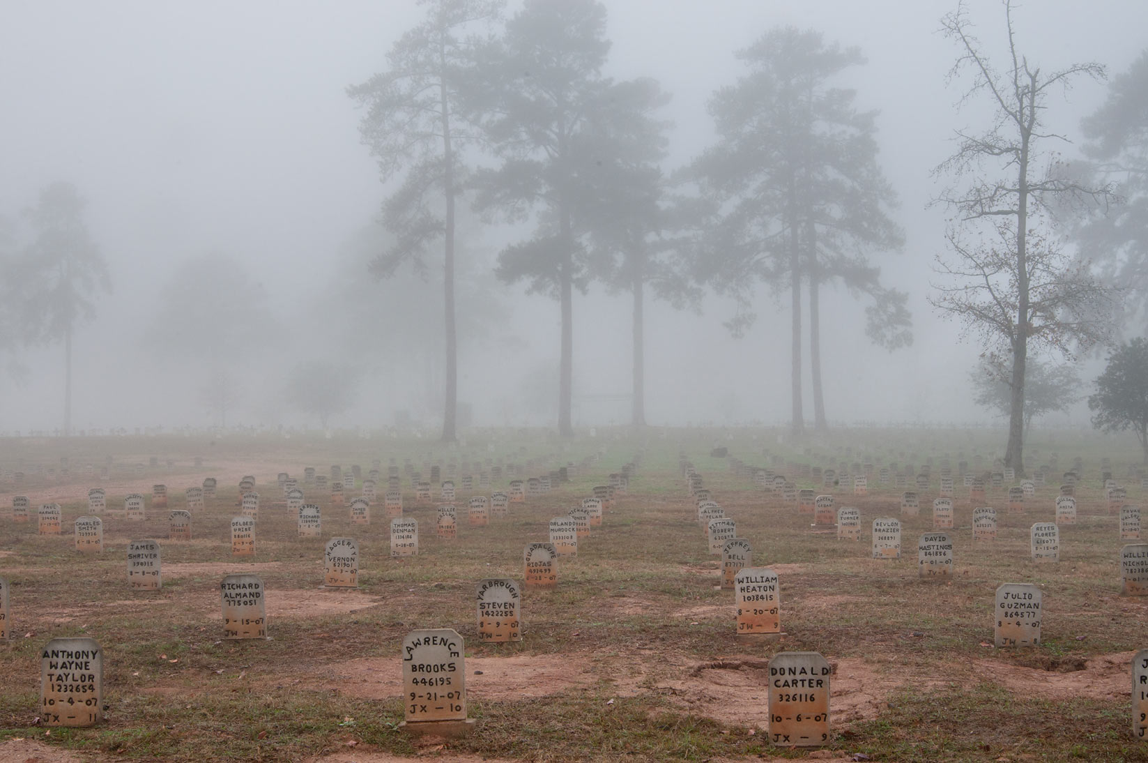 TDCJ Captain Joe Byrd (Peckerwood Hill) Cemetery in fog. Huntsville, Texas