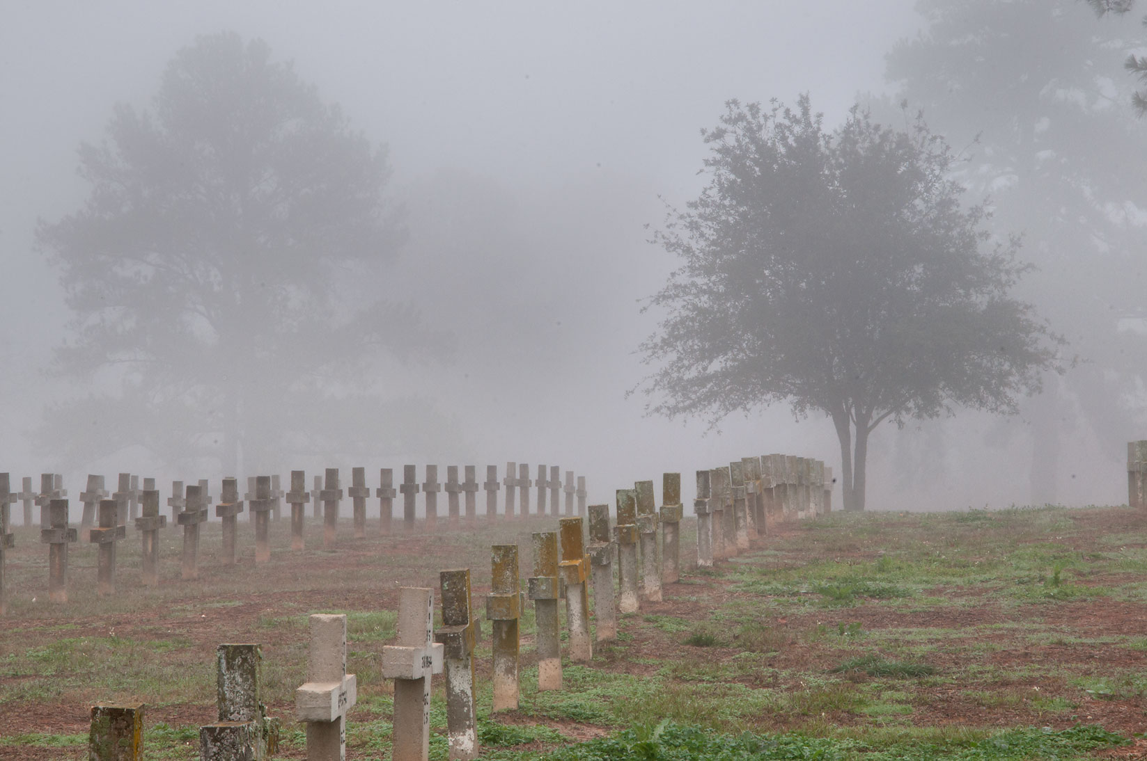 Rows of tombs in TDCJ Captain Joe Byrd...Cemetery in fog. Huntsville, Texas