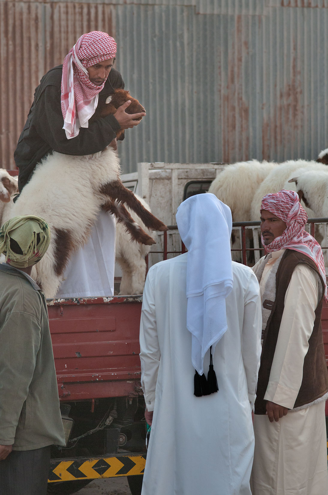 A prospective buyer asks to open the goat's mouth...Wholesale Markets area. Doha, Qatar