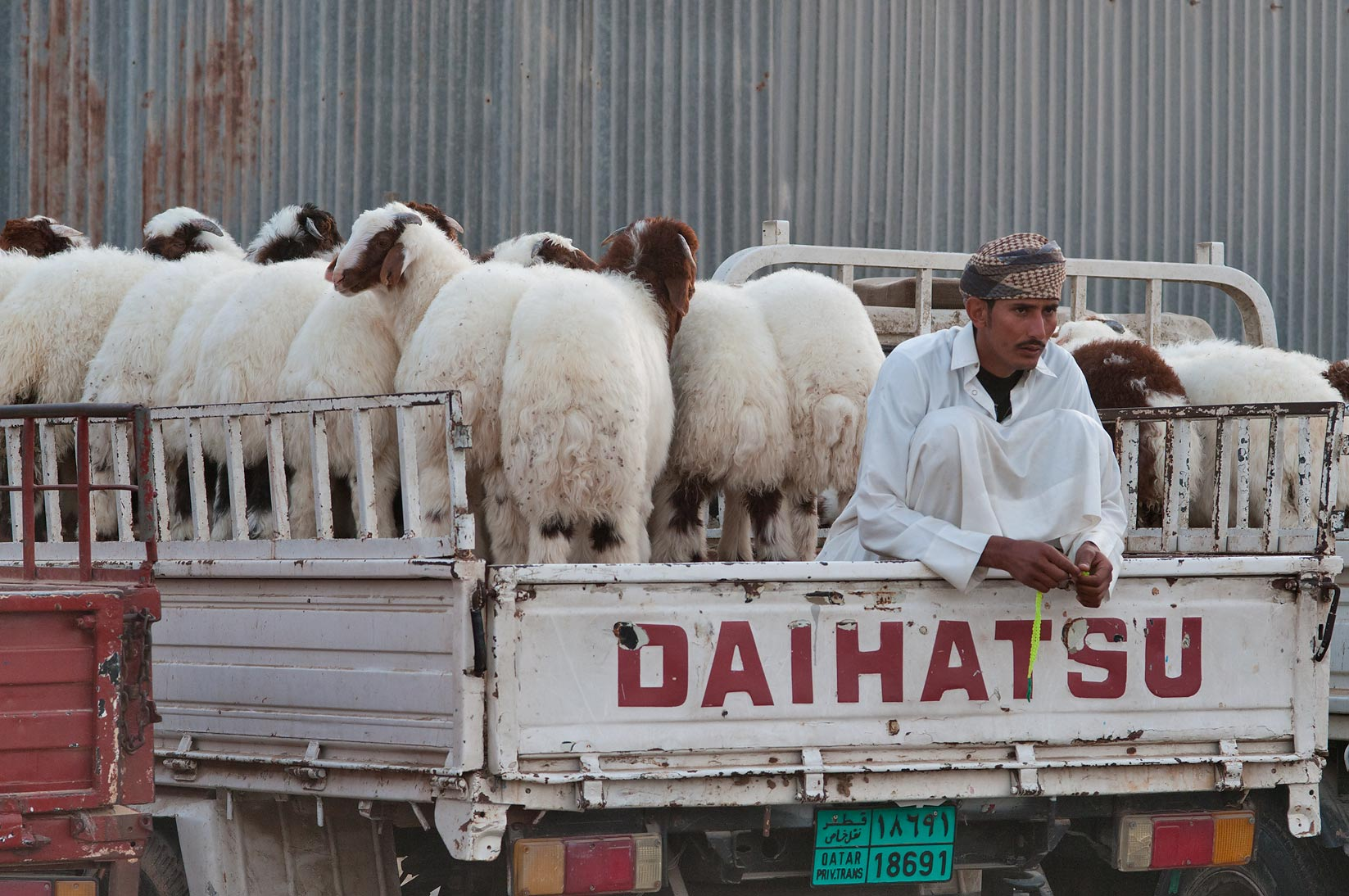 A seller with animals sitting on a truck in Sheep...Wholesale Markets area. Doha, Qatar