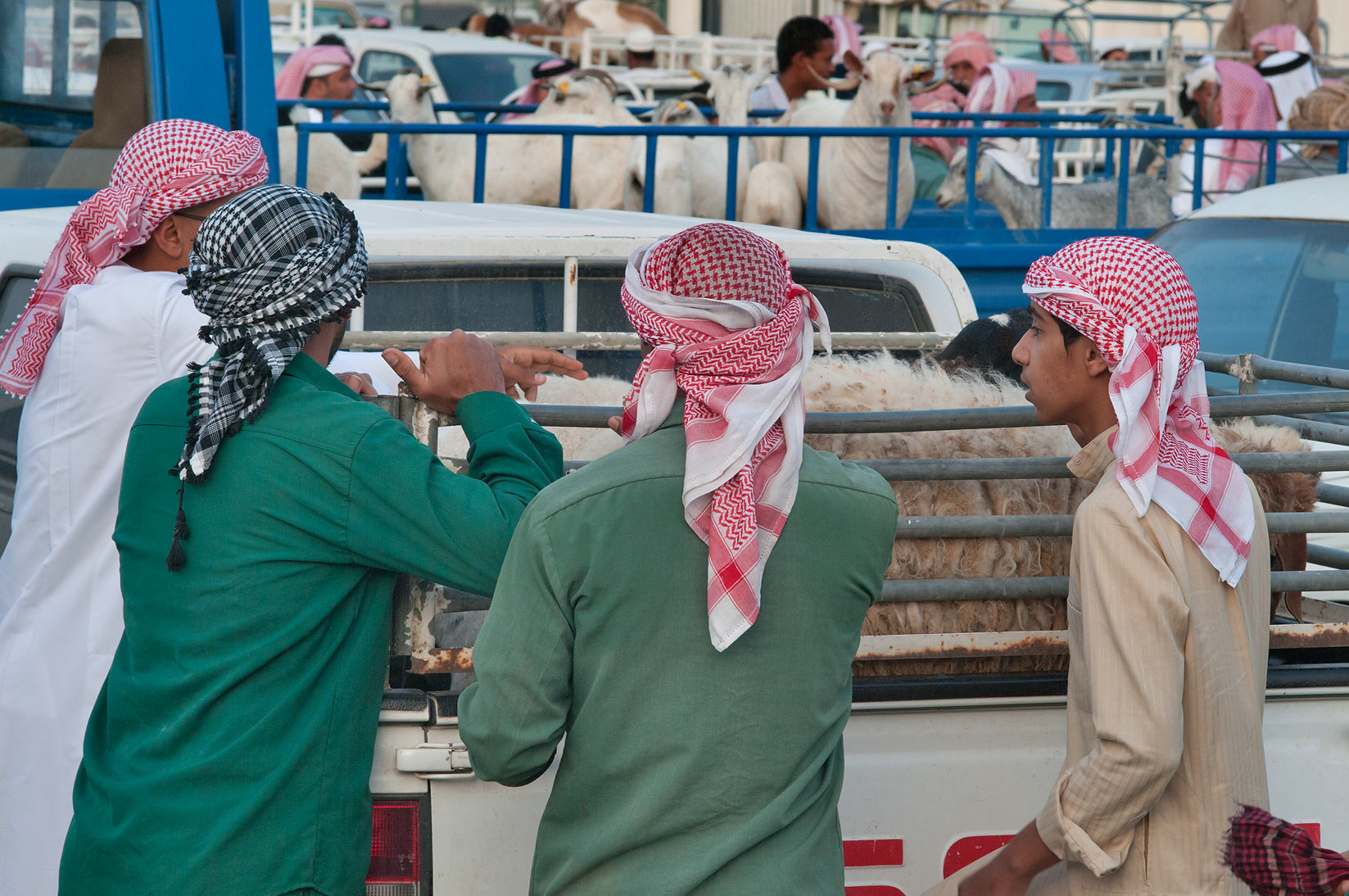 Shopping in Sheep Market, Wholesale Market area. Doha, Qatar