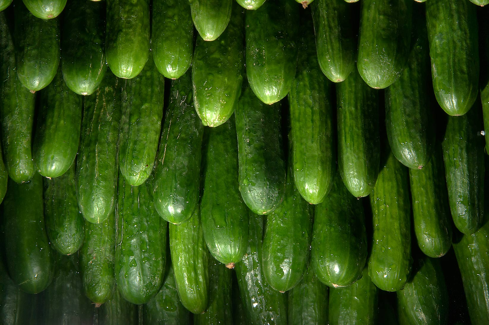 Stack of cucumbers in Vegetable Market, Wholesale Markets area. Doha, Qatar