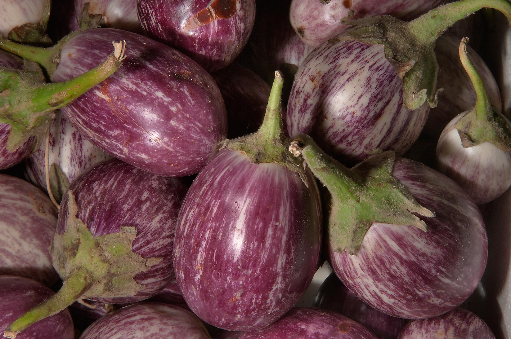 Eggplant in Vegetable Market, Wholesale Markets area. Doha, Qatar