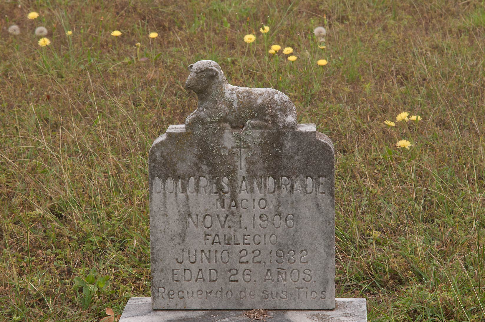 Tomb of Dolores Andrade Nacio (1906-1932) in a...Port Sullivan, west from Hearne. Texas