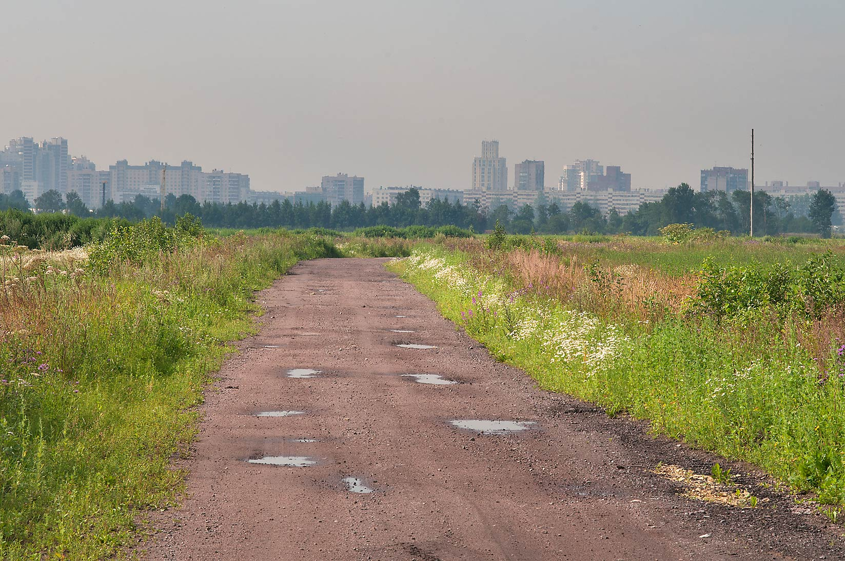 Field road in the area of former black markets...mile north from St.Petersburg. Russia