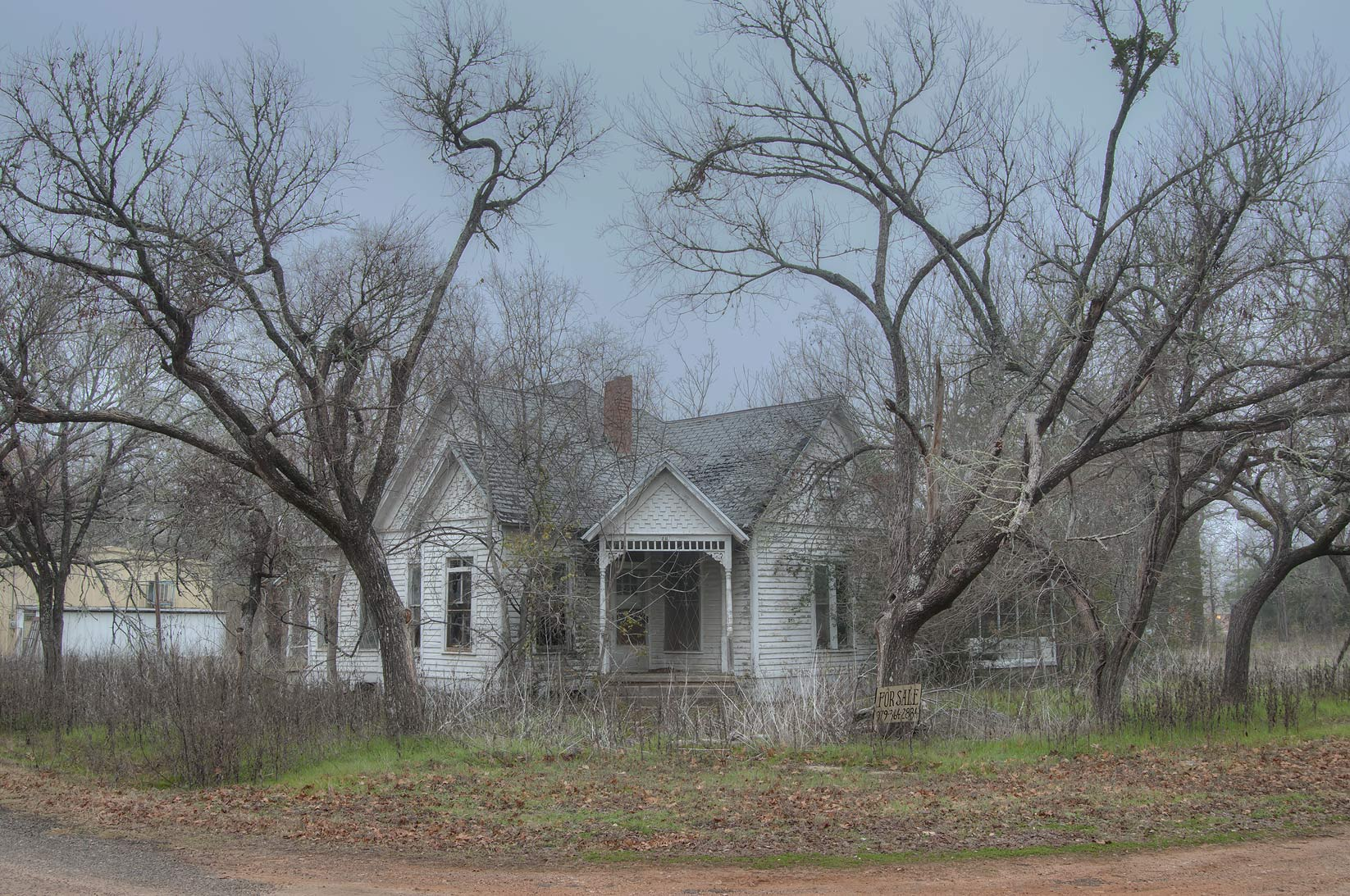 Overgrown house at a corner of Kezee and China streets. Calvert, Texas