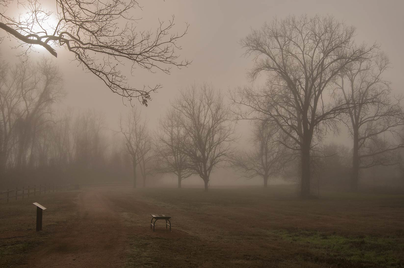 Ferry Rd. in fog in Washington-on-the-Brazos State Historic Site. Washington, Texas