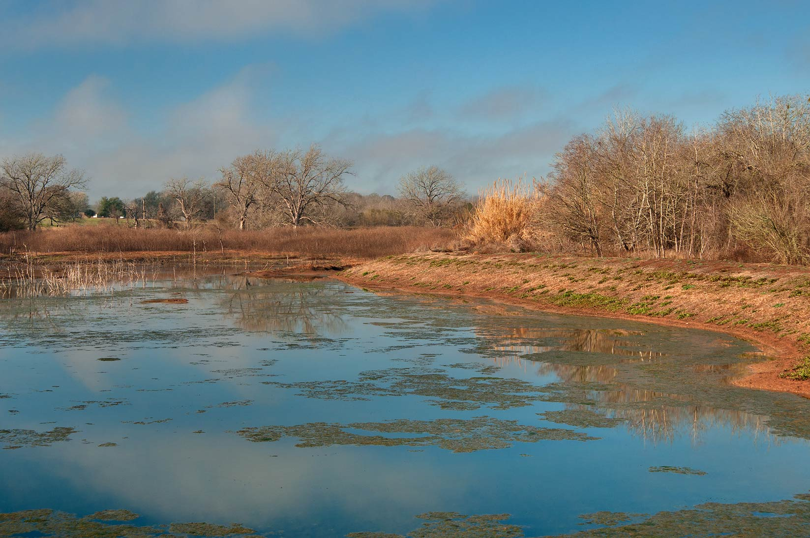 A pond in Washington-on-the-Brazos State Historic Site. Washington, Texas