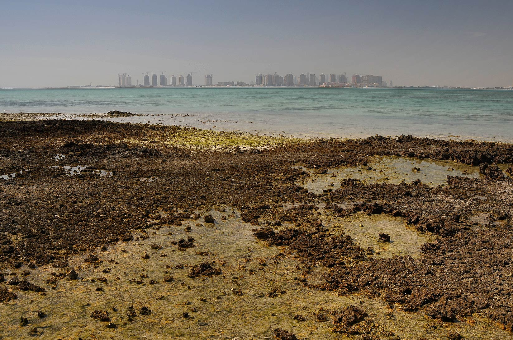 Shell fragments cemented into beachrock in Al Aaliya Island (Jazirat al Aliyah). Qatar