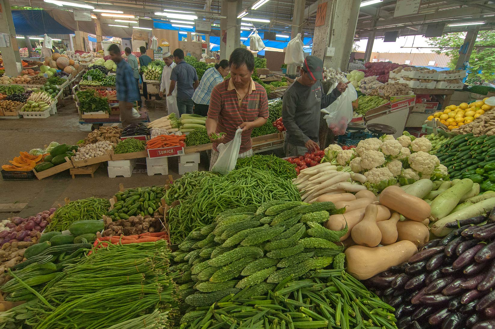 Vegetable Market, Wholesale Markets area in Abu Hamour. Doha, Qatar