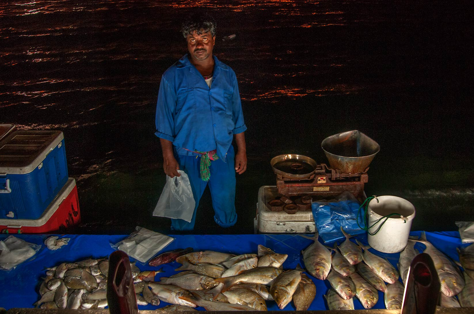Vendor of evening fish market on Corniche (Fresh Fish Sold). Doha, Qatar