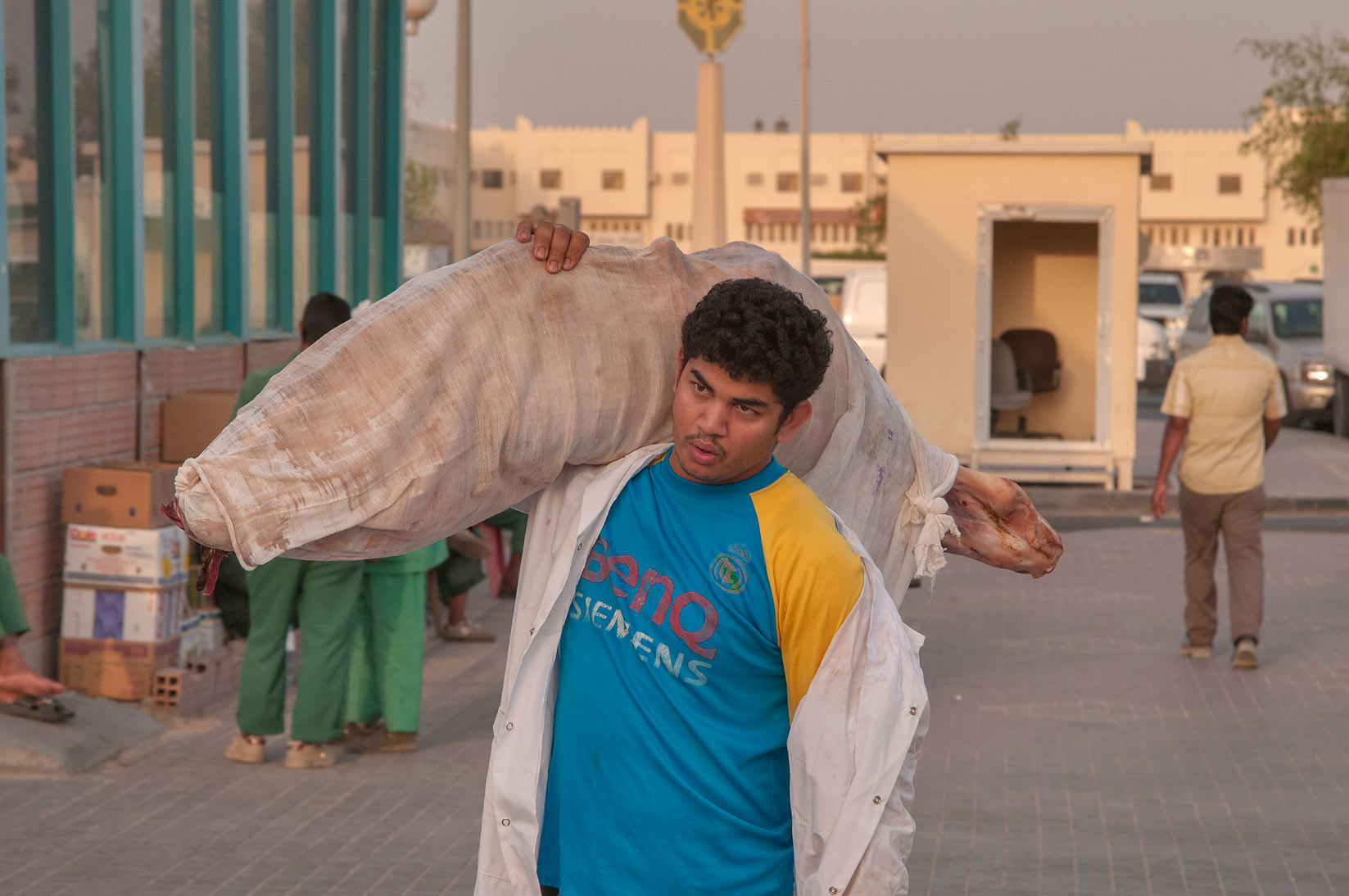 Carrying mutton in area of Wholesale Markets in Abu Hamour. Doha, Qatar