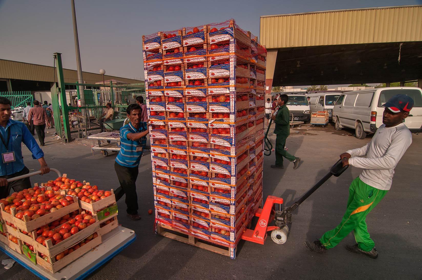 Carrying boxes with tomato from Wholesale Vegetable Market in Abu Hamour. Doha, Qatar