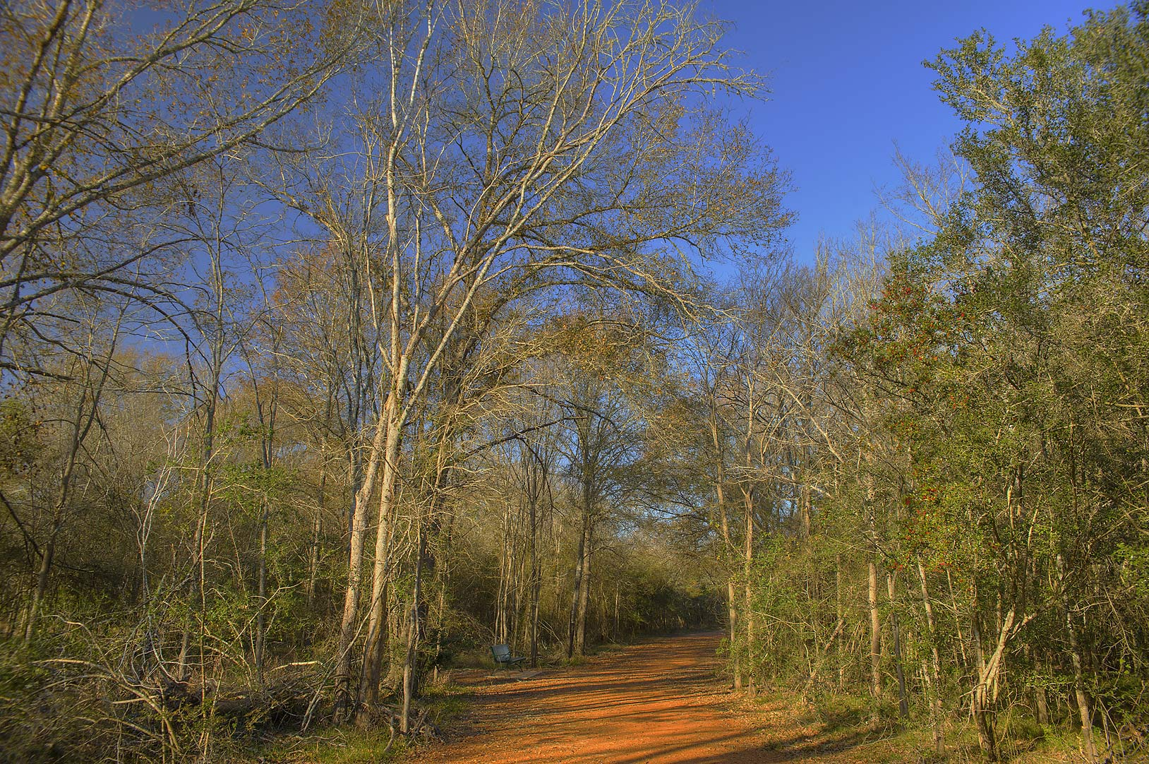 Raccoon Run Trail in Lick Creek Park. College Station, Texas
